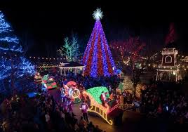 Tumbleweed Christmas Trees by Craziest Christmas Tree Trends In America Angie U0027s List