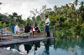 100 Ubud Hanging Garden Bali Jungle Fish Indonesiacom Magazine 3