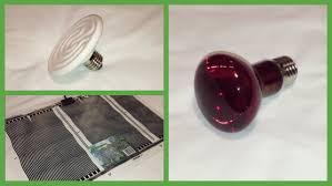 heating snakes cermaic vs heat bulbs vs heat pads