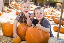 Pumpkin Patch Columbus Ga by Four Fun Fall Events For The Family