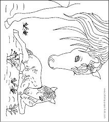 Horses Coloring Pages And Sheets Can Be Found In The SaveEnlarge Foal Hellokidscom
