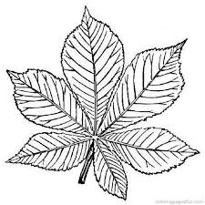 Trees And Leaves Colouring Pages Page 2