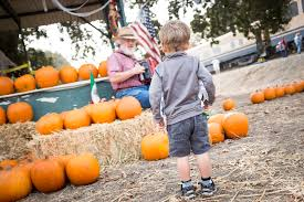 Best Pumpkin Patch Near Roseville Ca by Pumpkin Train Sacramento Rivertrain