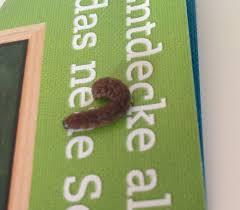 komischer brauner wurm raupe im bett würmer larven