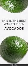 Pumpkin Guacamole Throw Up Buzzfeed by Best 25 Avocado Facts Ideas On Pinterest Salad Nutrition Facts