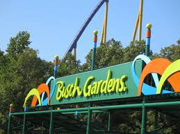 Busch gardens williamsburg schedule