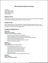 Resume Template For Government Jobs Format Mollysherman