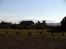 Sauvie Island Pumpkin Patch Cow Train by Sauvie Island Oregon Pacific Northwest Photoblog