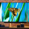 3 mẫu TV OLED đứng đầu các bảng xếp hạng thế giới nên cân ...