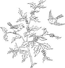 Bird Coloring Page With Holly