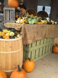 Free Pumpkin Patch Charleston Sc by Best Corn Mazes In South Carolina