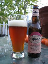 Dogfish Pumpkin Ale Clone by Ales To Lagers Beer Review Dogfish Head 90 Minute Iipa