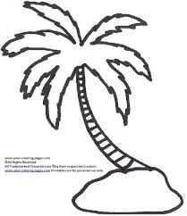 Palm Trees Coloring Pictures