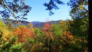 100 Tree Houses With Hot Tubs House Cabin Rentals Springs NC A Romantic Getaway With