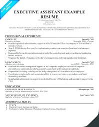 Director Of Technology Job Description Formidable Sample Resume Executive Assistant Templates To Ing