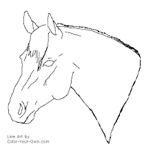 Realistic Horse Head Coloring Pages Page Quarter