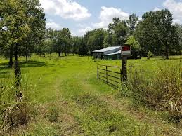 10908 W Green Hill Rd Smithville TN - Foster & Foster Realty ... 50 Acre Ranch With Main Home Guest Cottage And 6 Stall Barn Best 25 The Restaurant Ideas On Pinterest Man Cave Sonshine Barn Northern Michigan Wedding Venue Wilson Real Estate Chattel Auction Metal Barns Tennessee Tn Steel Pole Prices 10908 W Green Hill Rd Smithville Foster Realty Horse Designs Tt Cstruction Worlds Best In Ohio Homes For Sale 0 Tisdale Dr 37166 Stagecoach Inns Visiting The Inn Youtube