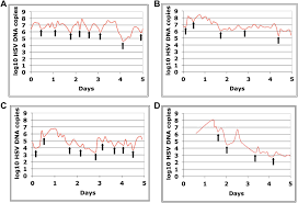 Herpes Viral Shedding Frequency by Rapid Localized Spread And Immunologic Containment Define Herpes