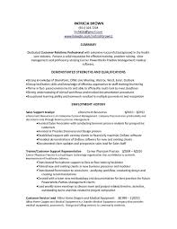 Examples Of Summaries On A Resume New Summary For Customer
