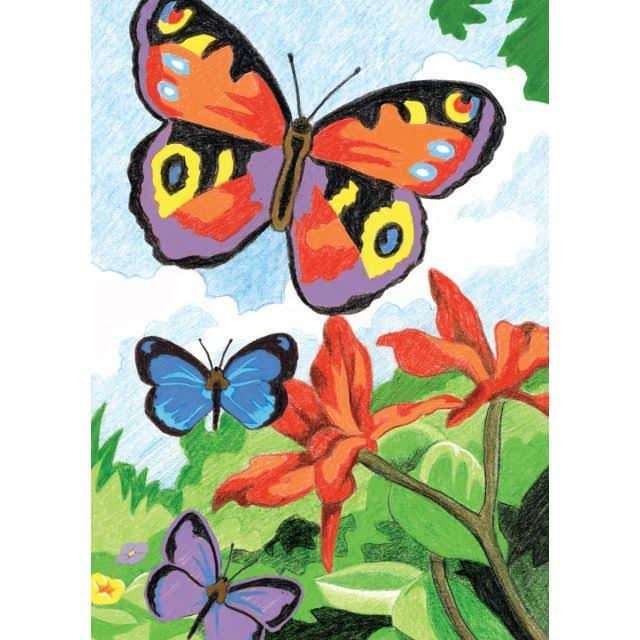 Number Mini Butterflies Royal Color Pencil Kit