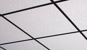 Black Ceiling Tiles 2x4 by Printed Pro 2 X 4 White Box Of 10
