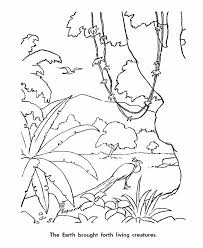 The 6th Day Of Creation Bible Coloring PagesCreation