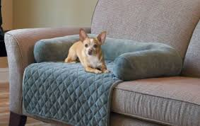 Bed Bath Beyond Couch Covers by Sofa Couch Protector Amazing Sofa Pet Protector Micro Suede