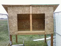 100 Pigeon Coop Plans Building A New Bird Loft Murphys Bird Dog Blog Archives