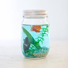 492 Best Jars Jar Lids Images On Pinterest