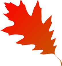 Autumn Leaf Red Orange Clip Art