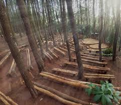 Hutan Pinus Dlingo Bantul Imogiri