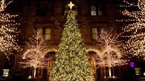 Christmas Tree Disposal New York City by 100 Christmas Tree Disposal Nyc Getting The Right Tree This
