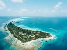 100 Kuramathi Island Maldives A Twitter Encapsulating A Lush Foliage