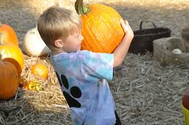Pumpkin Patch Columbia Sc 2015 by Summerville Property A Holiday Home For Pumpkins Christmas Trees