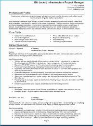 Sample Resume Project Coordinator Ngo Impressive Manager Cv