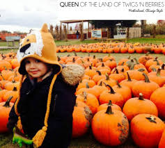 Goebberts Pumpkin Farm Haunted House by Unique Pumpkin Experiences In Chicagoland Queen Of The Land Of