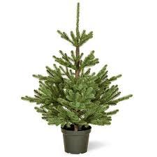 Christmas Tree Artificial Christmas Trees Pre Lit Fibre Optic Pe
