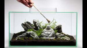 Oliver Knott Aquascaping With Fluval Edge 2 Aquarium - YouTube Aquascaping Artist Oliver Knott Scapingaquarium Pinterest Schwimmende Stein Steine Im Aquarium By Knott Youtube Aquascapi Sequa Interzoo 2012 Feat Chris Lukhaup Live Part 3 The Island Aquascape Step Aquariology With At The Koelle Zoo Heidelberg New Project Photo Editor Online And Editor Made Teil 1 Inspiration Tips Tricks Love Aquascaping Octopus Aquarium Via Aquac1ubnet