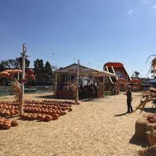 Mission Valley Pumpkin Patch by Pumpkin Station 57 Photos U0026 36 Reviews Amusement Parks 5354