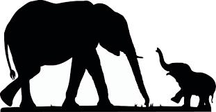 Baby b Elephant b b Silhouette b & Becuo