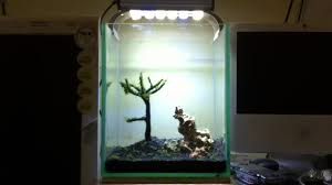 Nano Aquascape For Nano Tank 1 - First Set Up - YouTube How To Set Up An African Cichlid Tank Step By Guide Youtube Aquascaping The Art Of The Planted Aquarium 2013 Nano Pt1 Best 25 Ideas On Pinterest Httpwwwrebellcomimagesaquascaping 430 Best Freshwater Aqua Scape Images Aquascape Equipment Setup Ideas Cool Up 17 About Fish Process 4ft Cave Ridgeline Aquascape A Planted Tank Hidden Forest New Directly After Setting When Dreams Come True