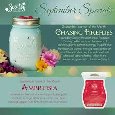 Pumpkin Scentsy Warmer 2013 by Scentsy Warmer Of The Month For September 2014 Called Chasing