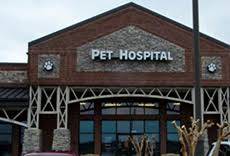 agape animal hospital agape pet hospital veterinarian