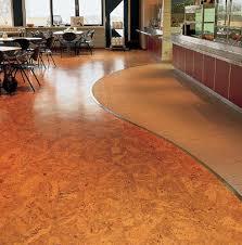 Bona Cork Floor Sealer by Technical Info Wicanders Cork Oak Blog