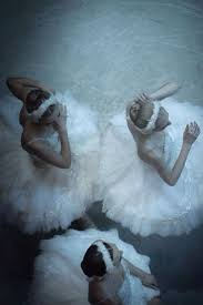 Linden Street Curtains Odette by 1383 Best Dance Ballet Opera Images On Pinterest Ballet Dancers