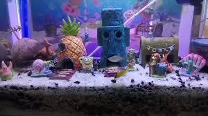 Spongebob Aquarium Decor Set by Spongebob Aksesoris Aquarium Youtube