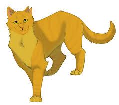 warrior cat sunstar warrior cat wiki fandom powered by wikia