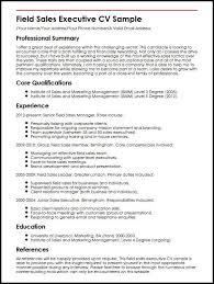Field Sales Executive CV Sample