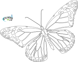 Trend Monarch Butterfly Coloring Page 69 About Remodel Line Drawings With