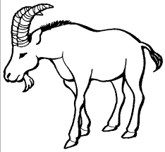 Goat Horns Coloring Page